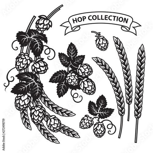 Slika na platnu Branches of hops, ears of barley end ribbon banner