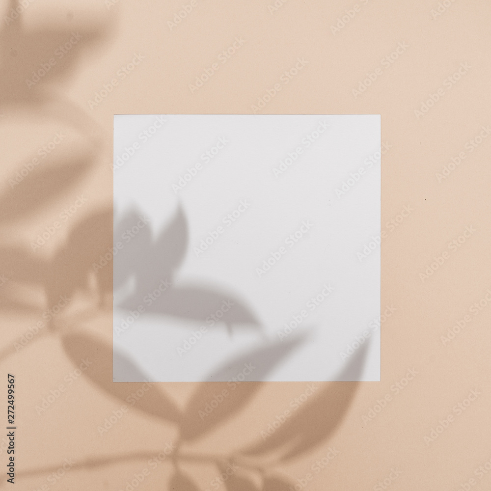Fototapeta Top view of green tropical leaf shadow on sand color background. Flat lay. Minimal summer concept with palm tree leaf. Creative copyspace with paper frame.
