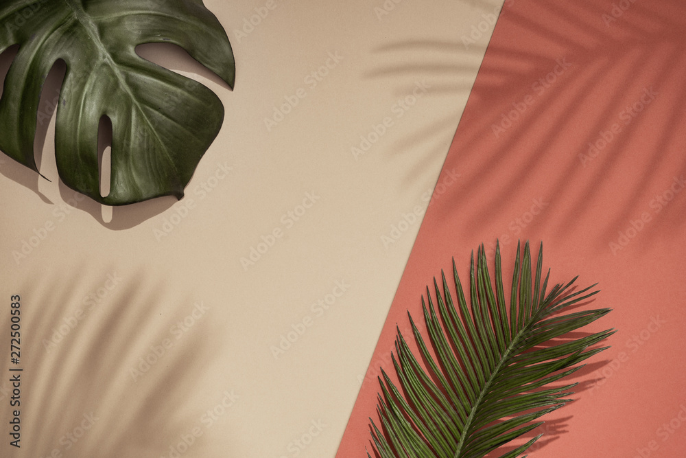 Fototapeta Top view of green tropical leaves and shadow on orange and sand color background. Flat lay. Minimal summer concept with palm tree leaf. Creative copyspace.