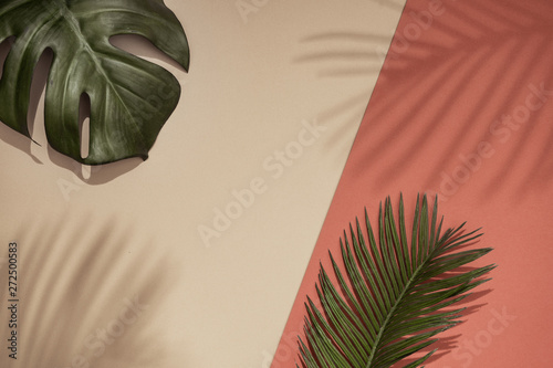 Fotografía  Top view of green tropical leaves and shadow on orange and sand color background