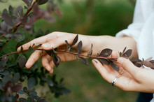 Woman Touches Plants