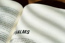 Psalms Open Bible