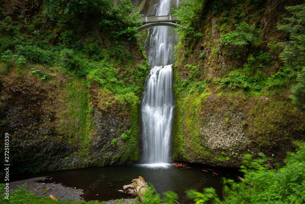 Fototapety, obrazy: Multnomah Falls in Columbia River Gorge, Oregon, USA