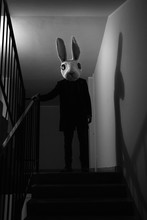 Creepy Rabbit On Stairs
