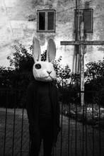 Terrifying Rabbit At Church