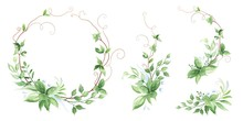 Floral Greenery Set Of Decors With Green Leaves And Branches. Vector Illustration In Watercolor Style For Your Design. Nature Template For Invitation Card.