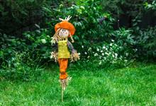 Scarecrow From Birds In The Garden