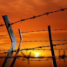Close Up Barbed Wire Fence Over Orange Color Sunset Sky