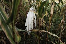 Ghost N Corn