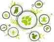 wildlife / biodiversity icon concept – endangered animals icons, vector illustration