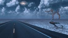 Desert Roadway