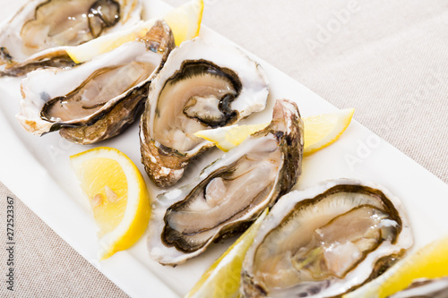Raw oysters - 272523367