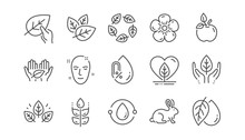 Organic Cosmetics Line Icons. No Alcohol Free, Synthetic Fragrance, Fair Trade. Sustainable Textiles, Animal Testing, Eco Organic Icons. Linear Set. Vector