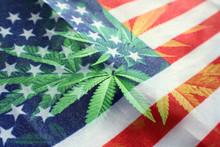 Legalized Marijuana Industry I...
