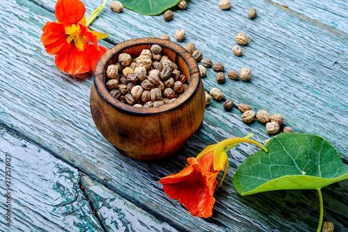 Photo  Seeds, and flowers of nasturtium