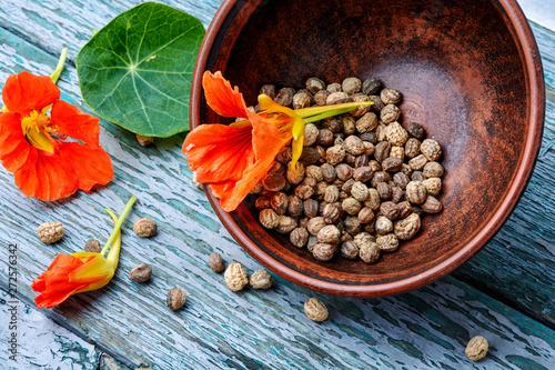 Seeds, and flowers of nasturtium Canvas Print