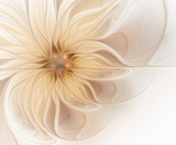 Fototapeta Kwiaty - Abstract fractal light beige flower