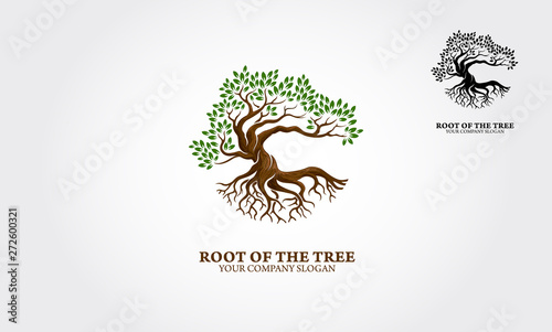 Stampa su Tela Root of the Tree logo illustrating a tree roots, branches