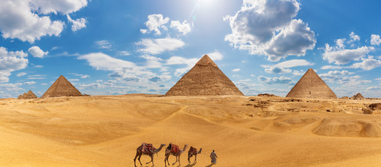 Panorama of Giza with the Pyramids, camels and a bedouin