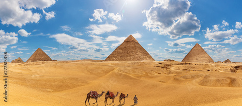 Fotografia Panorama of Giza with the Pyramids, camels and a bedouin