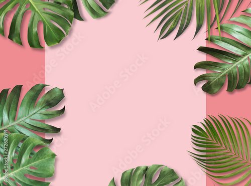 Photo sur Toile Les Textures Tropical leaves on pink paper background with copy space Summer banner design