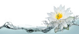 Fototapeta Fototapety do łazienki - Lotus flower in spray of water.