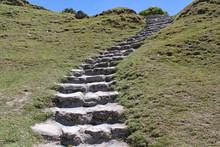 Stone Steps Cut Into A Grassy ...