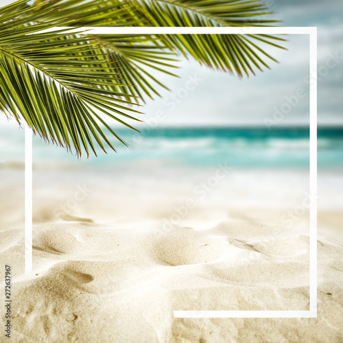 Keuken foto achterwand Palm boom Summer background of beach and free space for your decoration.