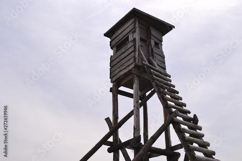 Tela mirador, tour de guet en bois pour chasseurs, structure en bois, Alsace, France