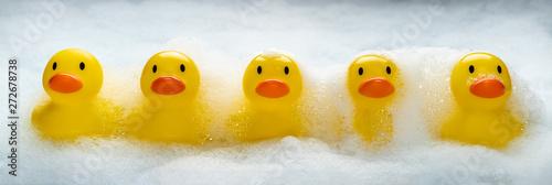 Valokuva  Duckies Duckies Duckies