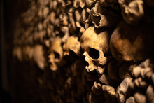 Skulls Of The Catacombs
