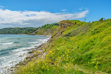The Crumbling Rocky Shore At Peveril Point, Swanage On A Bright June Day
