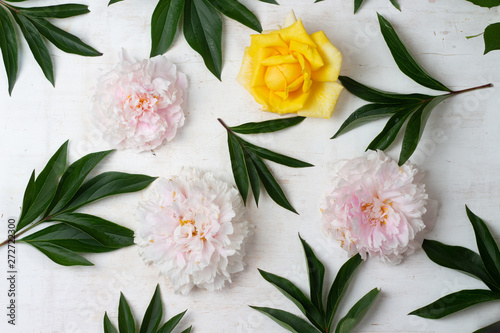Beautiful pink and white peony flowers on white wooden table top view. Flat lay.
