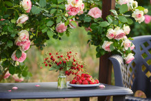 Delicious Strawberries On A Plate. Breakfast In The Garden Under A Lovely French Rose Bush