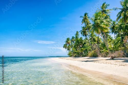 Fotografie, Obraz  Palm trees swaying along an empty tropical Brazilian island beach on a remote is