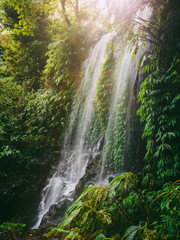 Panel Szklany Wodospad Waterfall with sunshine in Bali. Tropical forest and waterfall