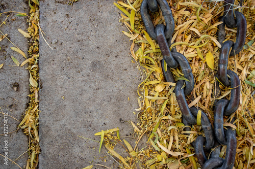 Pieces Of Chain In Yellow Palo Verde Leaves On The Sidewalk