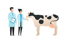 Trendy Flat Scientist Character Vector Illustration. Set Of Cartoon Male And Female Science Team Standing In Front Of Cow. Concept Of Biology And Gene Modification. Design Element.