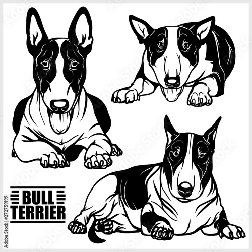 Canvastavla Bull Terrier - vector illustration for t-shirt, logo and template badges