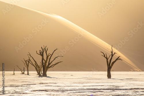 deadvlei-w-namib-naukluft-park-narodowy-namibii