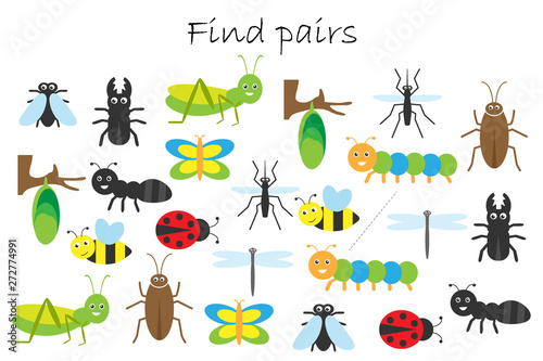 Fotomural Find pairs of identical pictures, fun education game with insects theme for chil