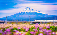 Shinkansen Bullet Train Passin...