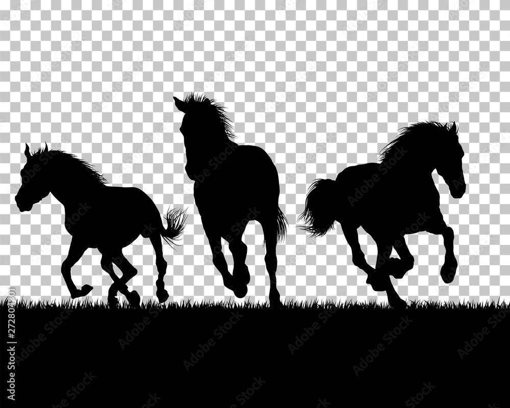 Końska sylwetka na trawy tle