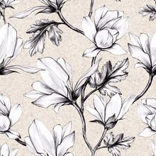 White Magnolia Flower And Leav...
