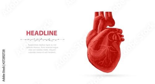 Obraz na płótnie Heart. Abstract 3d vector human heart isolated on blue