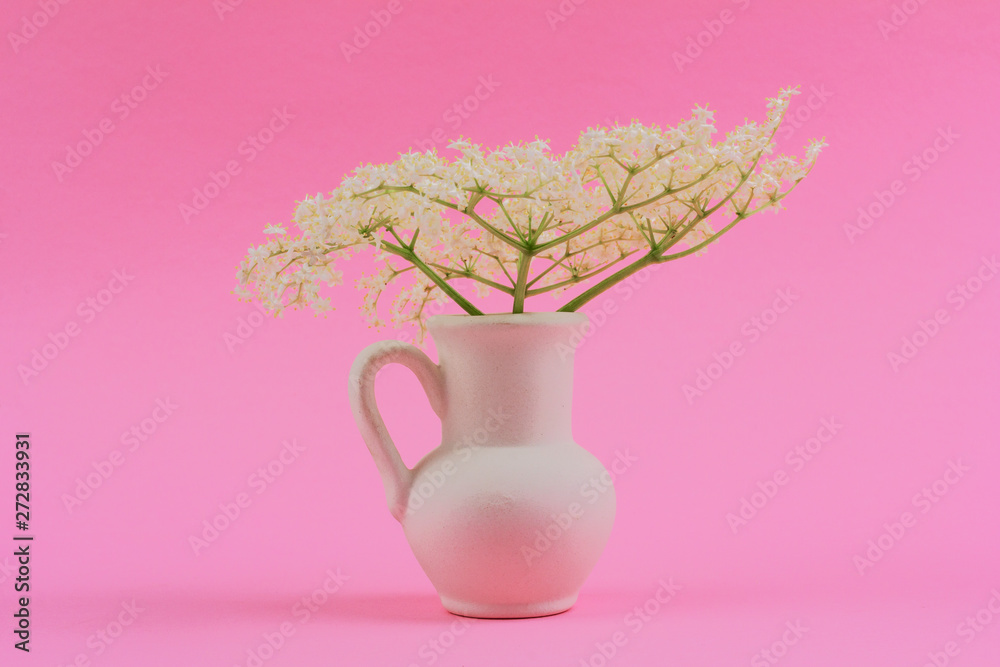 Fototapety, obrazy: bouquet of small delicate white elderberry flowers in a white jug on a pink pastel background close-up