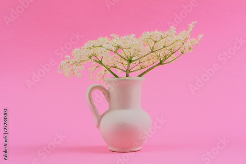 bouquet of small delicate white elderberry flowers in a white jug on a pink pastel background close-up - 272833931