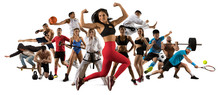 Sport Collage. Tennis, Soccer, Taekwondo, Fitness, Bodybuilding, MMA Fighter And Basketball Players