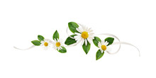 Daisy Flowers And Silk Ribbon In A Line Floral Arrangement