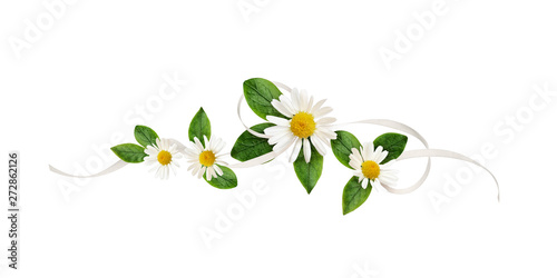 Photo sur Aluminium Marguerites Daisy flowers and silk ribbon in a line floral arrangement